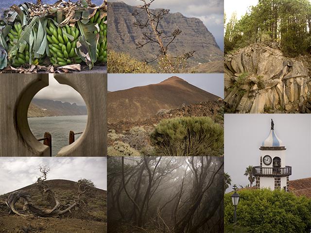 collage TFE.jpg