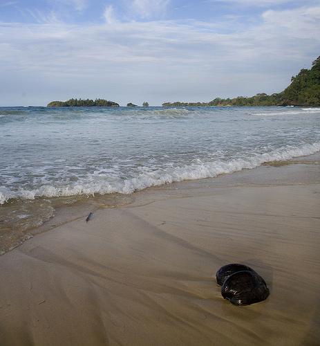 Isla de Bastimentos, Red frog beach Te cuento de viajes