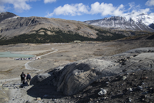 Morrenas antigua lengua Athabasca Glacier