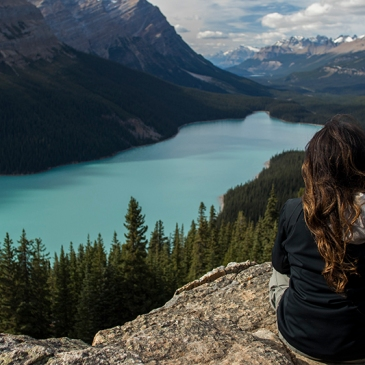 Peyto Lake cerca de Banff Rocosas canadienses