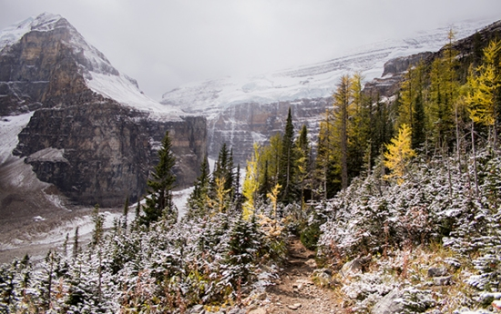 Sendero Six Glaciers Lake Louise