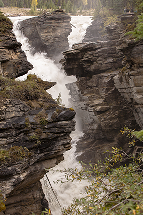 athabasca falls cañon