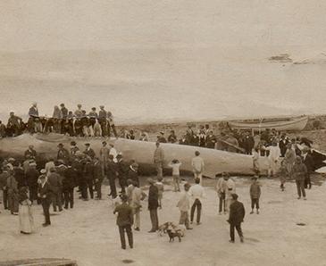 Foto 1921 Ballenera del Estrecho (Algeciras, Cádiz) Te cuento de viajes CVT