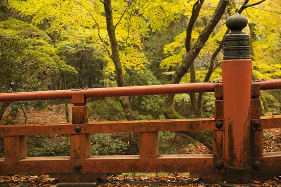 puente en Nara Japón