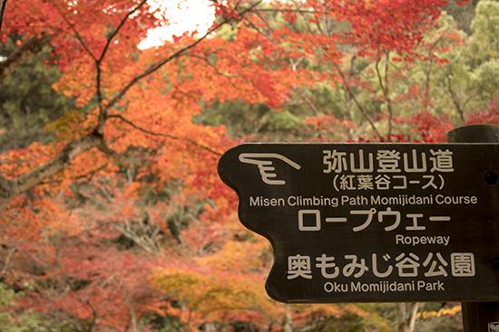 subida al monte Misen, Miyajima en otoño