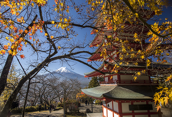 vistas panorámicas Fuji y pagoda Chureito Japón