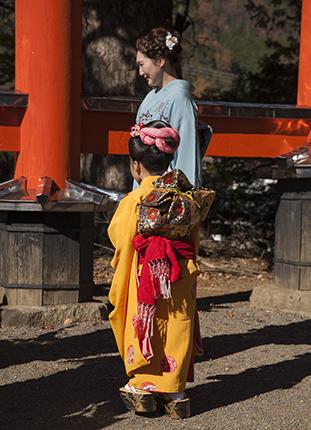 festival sichi go san Japón