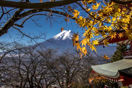 Otoño en Fuji Japón