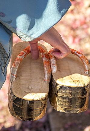 festival sichi go san Japón detalle