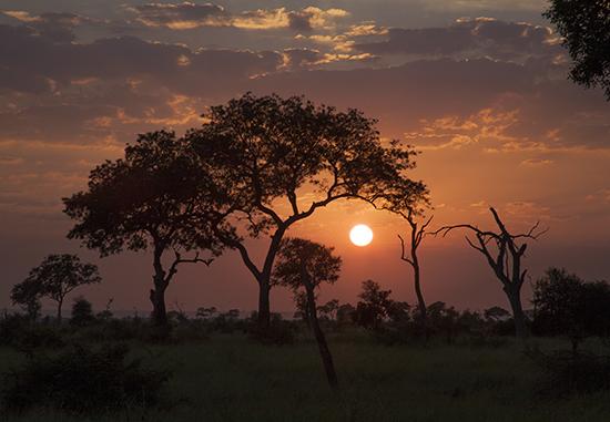 atardecer en Kruger National park Sudafrica