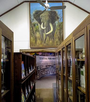 biblioteca Skukuza camp Kruger Sudafrica