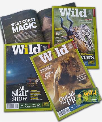 revista Wild Sanparks
