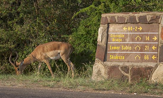 señalización carreteras Kruger N.P. Sudafrica