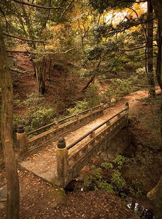 puentes en Miyajima Japon