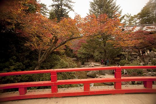 puentes en Miyajima Japon otoño
