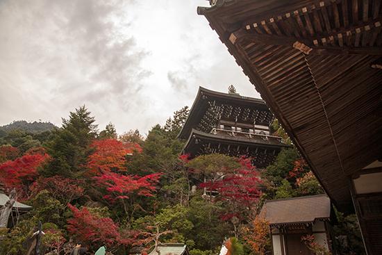 Daisho in temple Miyajima Island Japan otoño