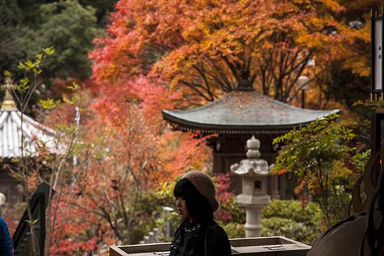 Daisho temple Miyajima otoño