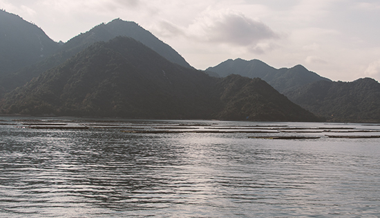 Mar de Seto Japon Miyajima island