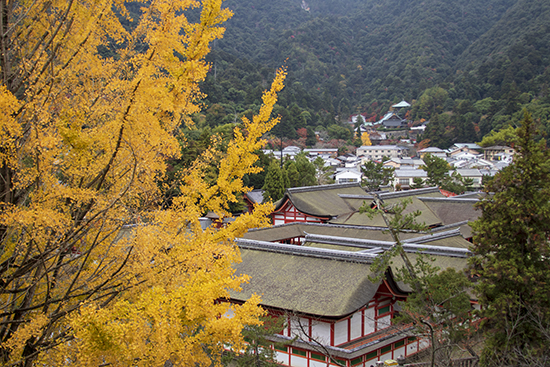 otoño en Miyajima