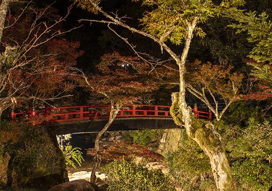rincones de Miyajima de noche