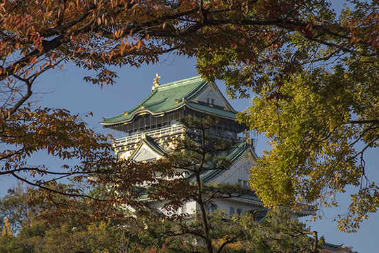 otoño en el castillo de Osaka