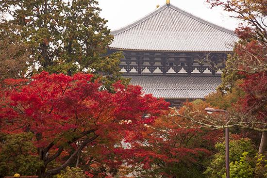 Todaiji temple Nara Japón