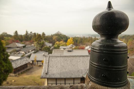 miradores Nara Japón