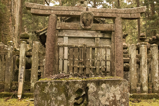 torii japon koyasan montañas cementerio