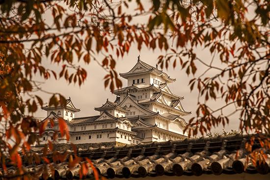 vistas del castillo de Himeji en otoño