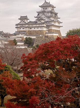 castillo de Himeji en otoño
