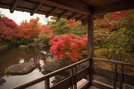 otoño en jardin japones Kokoen garden