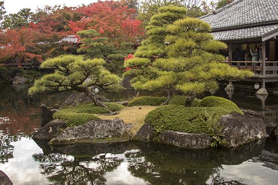 jardin Kokoen otoño
