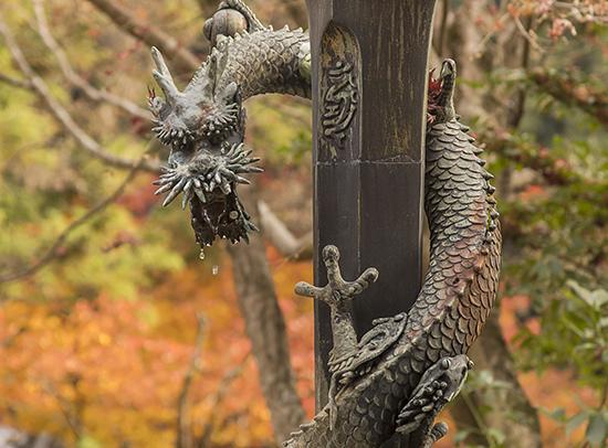 dragones en japon