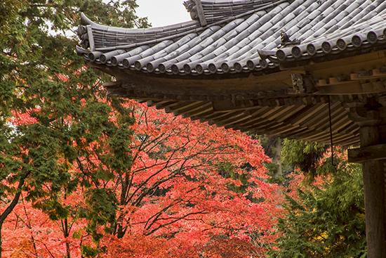 templos en el monte shosha japan
