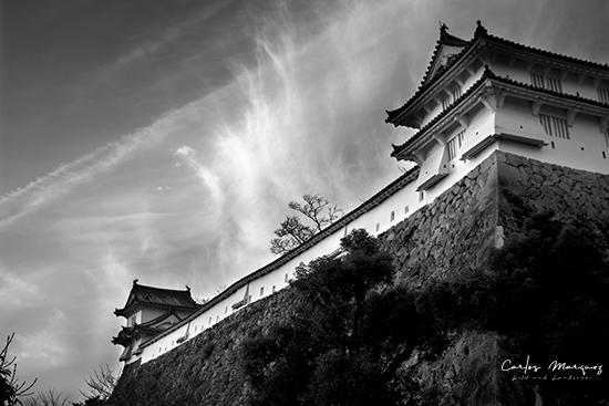 castillo Himeji en blanco y negro