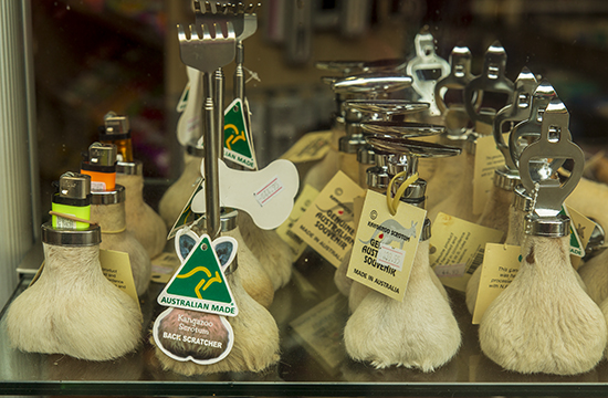 testiculos canguro souvenir australia