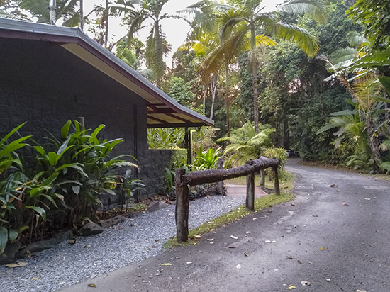 camping Cape Tribulation