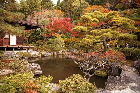 paisajismo japones jardines kioto