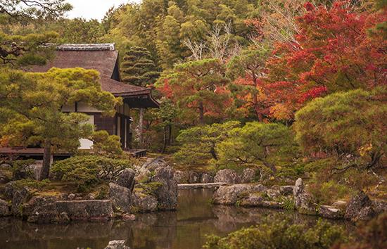 otoño en el templo de plata kioto