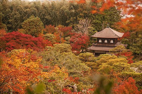 templo de plata noviembre Japón