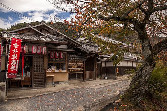 camino del filósofo kioto