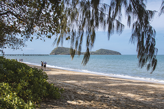 Palm Cove beach Queensland Australia