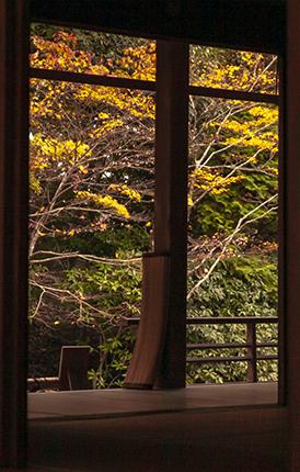 templos en kioto en noviembre