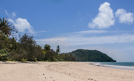 Myall beach Cape Tribulation Queensland