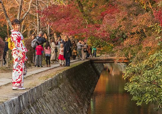 camino del filósofo en otoño kioto