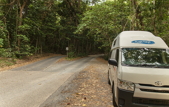 Cape Tribulation road cheapa campa