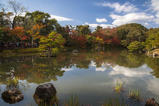 estanque templo dorado y jardines