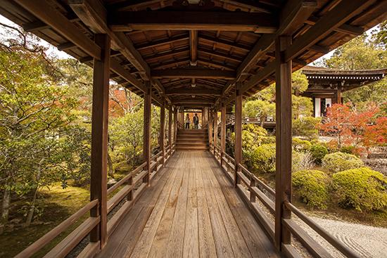 templos en noviembre kioto