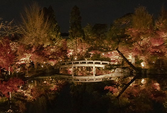 otoño en eikando garden de noche kioto