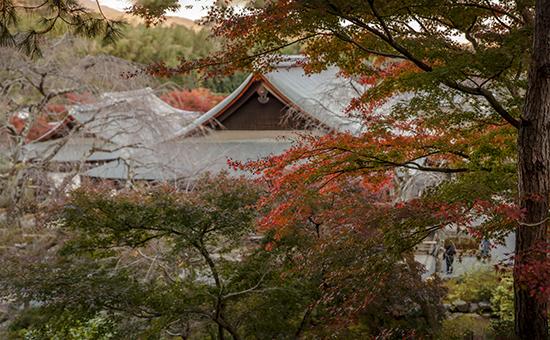 otoño en arashiyama kioto